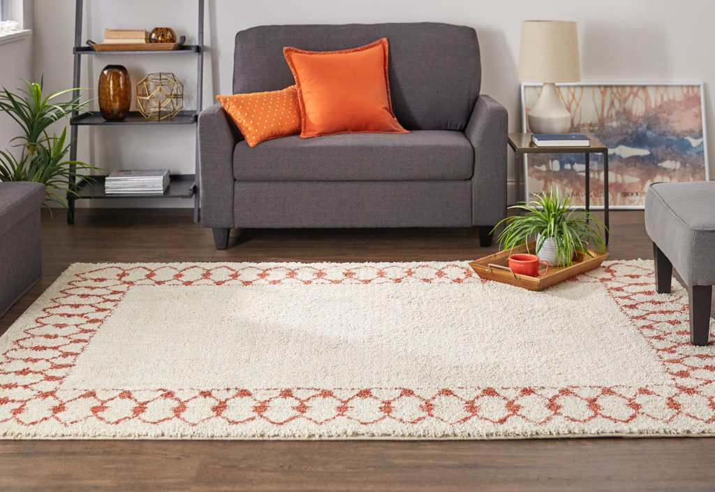 Photo of Mohawk Home's Chained Border Area rug in coral from the Laguna Collection