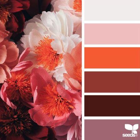Color Palette- Flame- Seeds